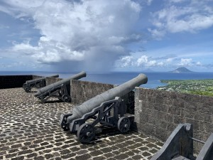 Fort with big guns